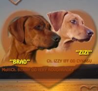 brad_izzy1